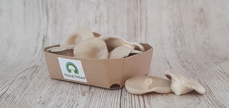 Austernpilze vom Pilzhof Nettetal