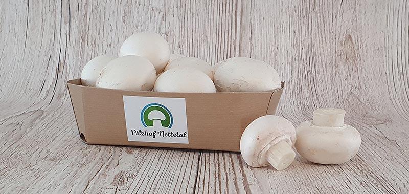 weiße Champignons vom Pilzhof Nettetal